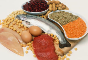 how protein helps you lose weight
